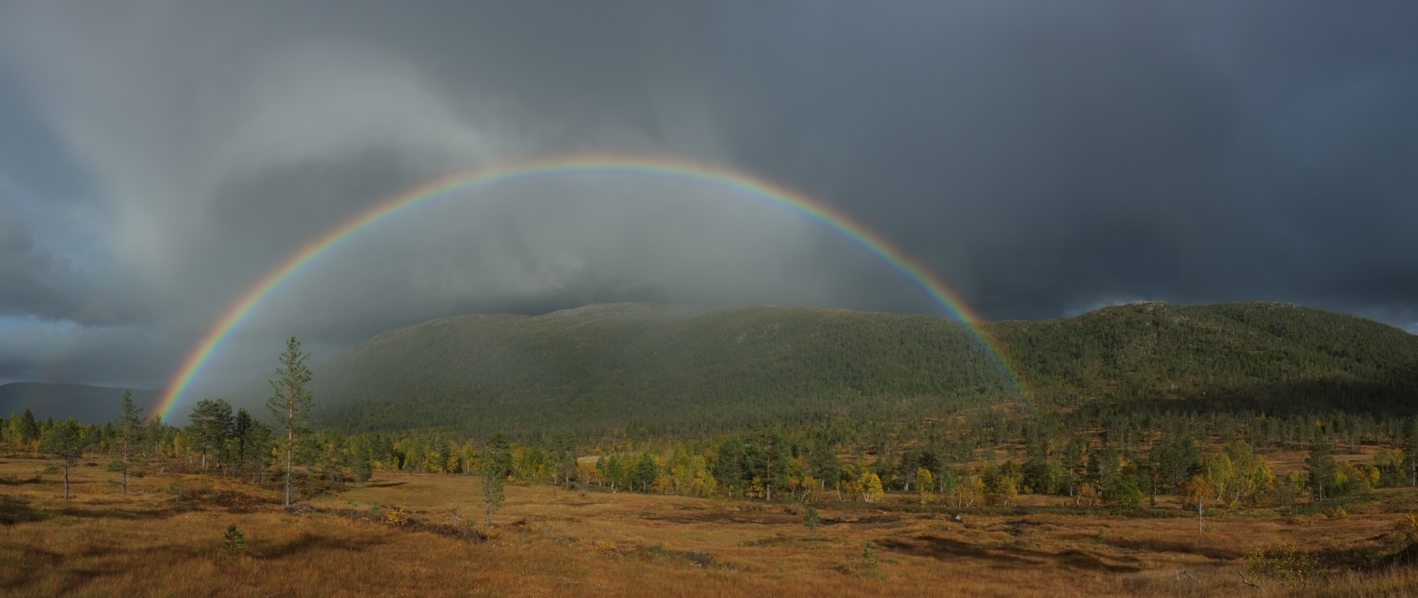 Flott regnbue ved Langøya, september 2015. Fotograf: Daniel Zwick