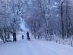 Snøen har kommet til dalen, 13. desember 2015. Fotograf: Friederike Zwick