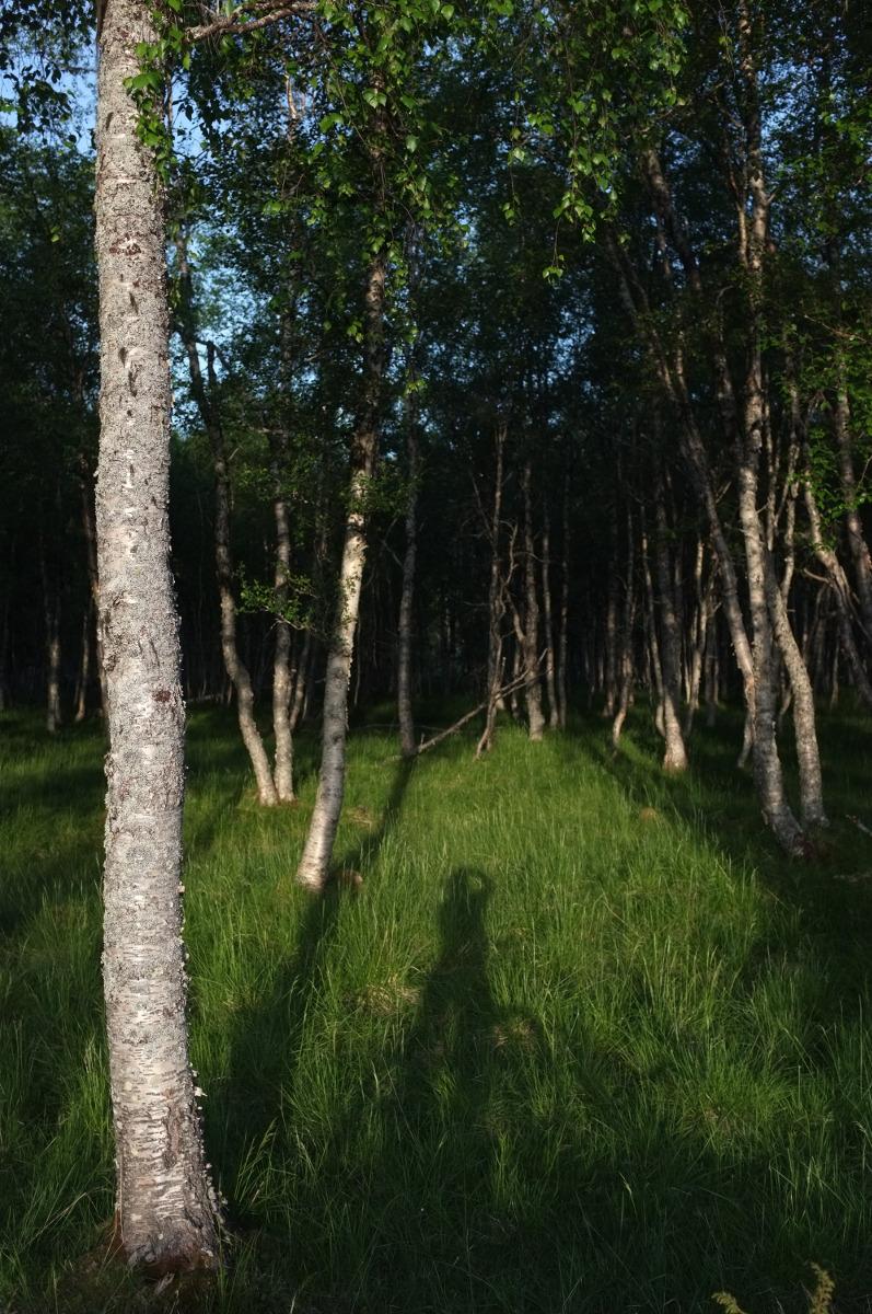 På sykkeltur gjennom dalen, en sen sommerkveld. Fotograf: Friederike Zwick