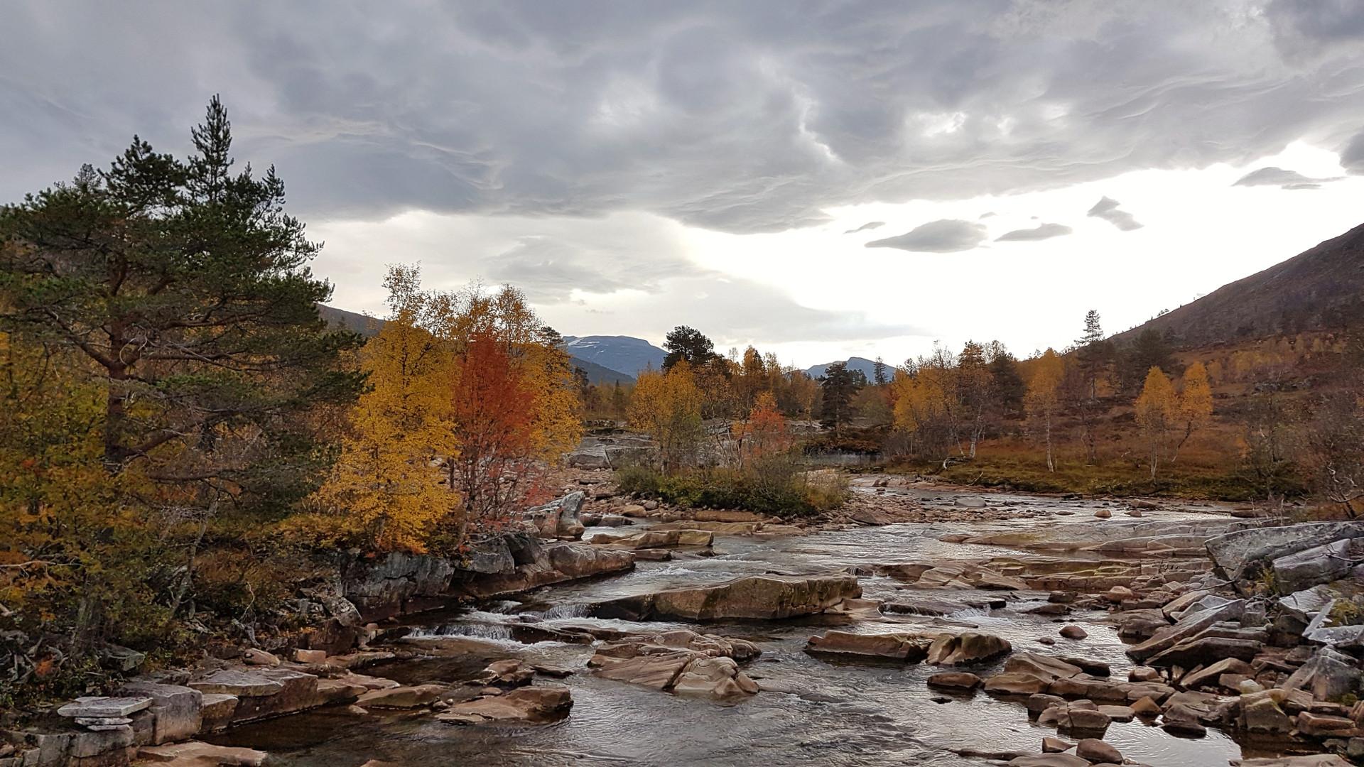 Høstbilde innover Vindøldalen - dalen i mitt hjerte, 30. september 2017. Fotograf: Kari Mette Skjølsvold
