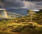 Bilde er tatt fra vestsiden av dalen ved Kudalsbekken. Fotograf: Kim Even Fiske