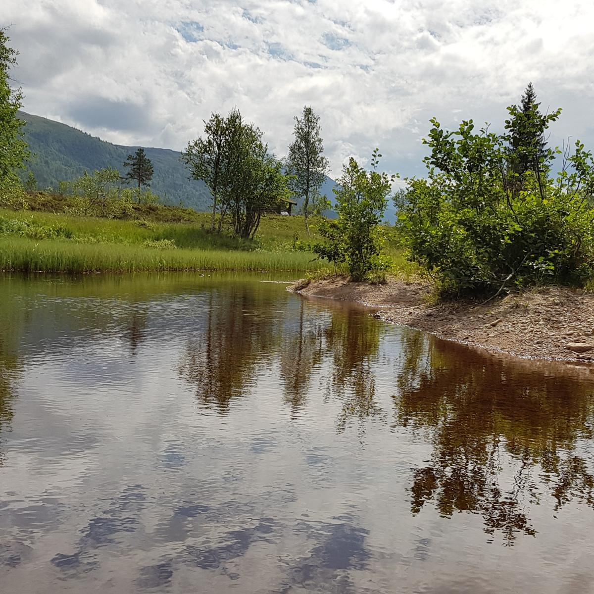 Over fossen ved utløpet av Harangdalsbekken til Vindøla, 24. juli 2018. Fotograf: Jan-Birger Fjellvang Heftøy