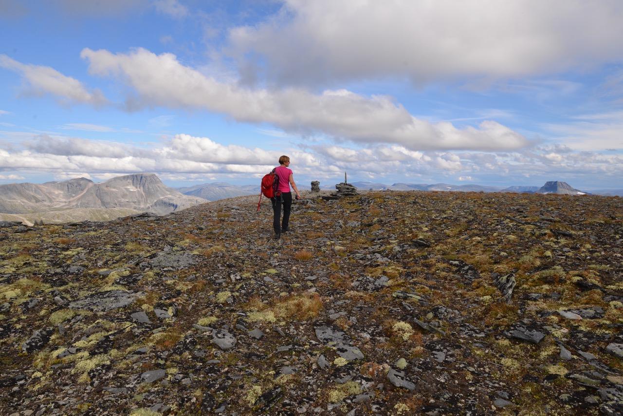 Fra toppen av Rognebba, 14. august 2018.  Fotograf: Kaj Fredrik Johansen