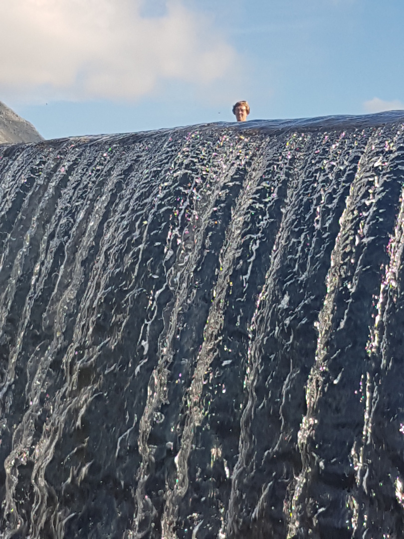 Kjærringa i Vassdalsvatnet, 1. august 2018. Fotograf: Bjørge Garden
