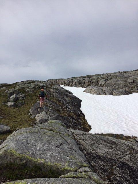 Kufjellet, 26. juli 2017. Fotograf: Kari Naustbakk