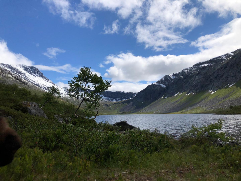 Vassdalsvatnet, 6. juli 2019. Fotograf: Leif Øyås