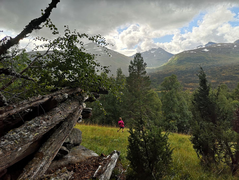 Lita frøken betrakter utsikten fra den gamle fjellgården Kontrabakken, 6. september 2020. Fotograf: Trine Storholt