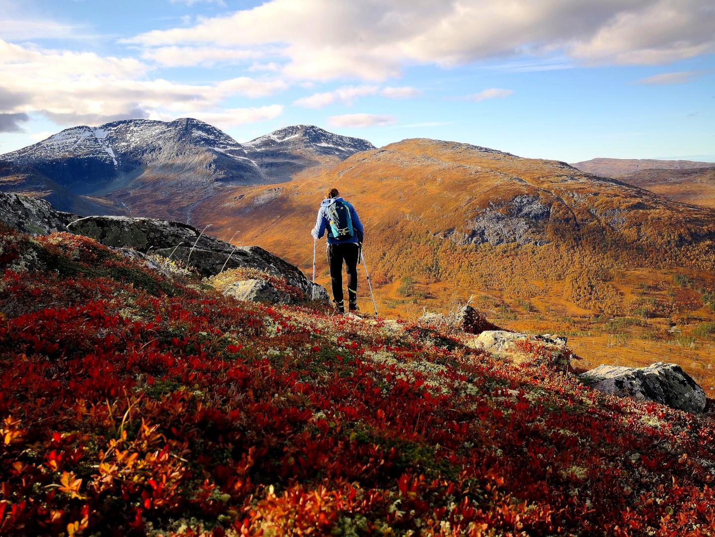 Min mor på tur ned fra Stygglifjellet i flotte høstfarger, ukjent dato. Fotograf: Trine Storholt