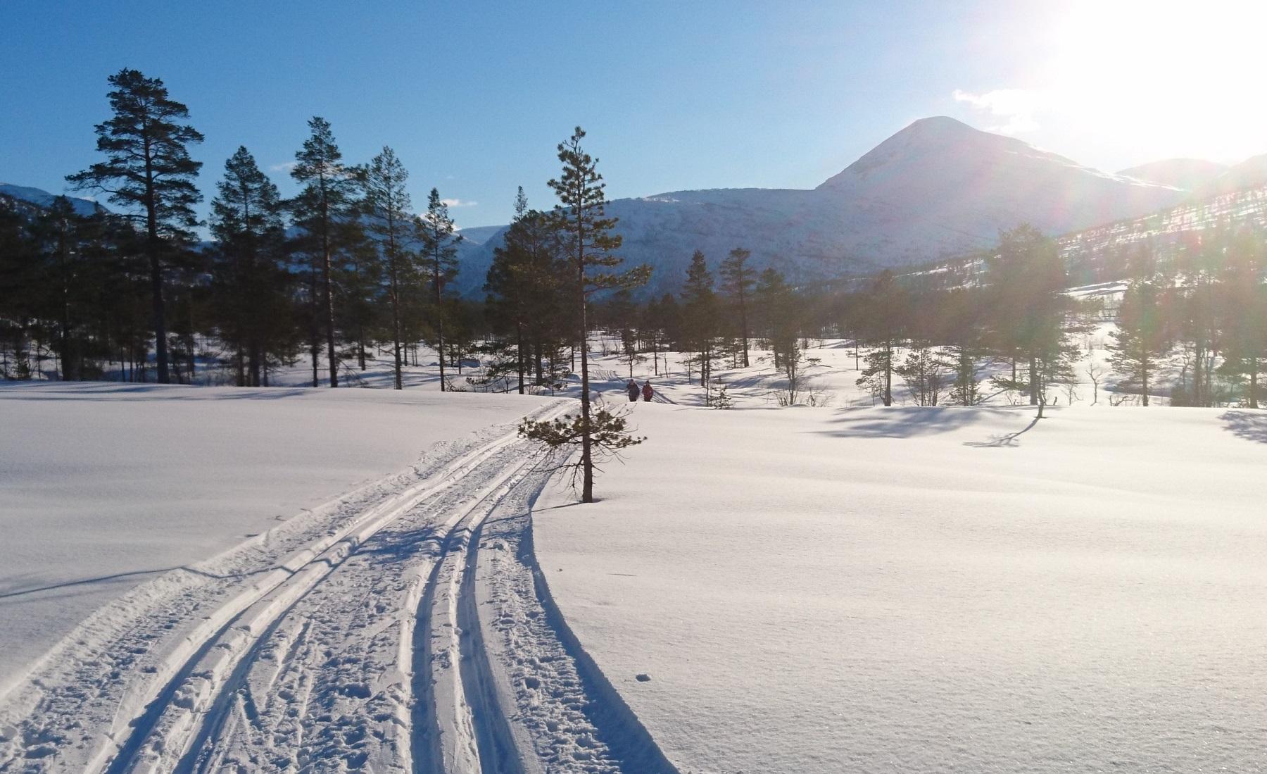 Fine skispor mot Mausetrøsta