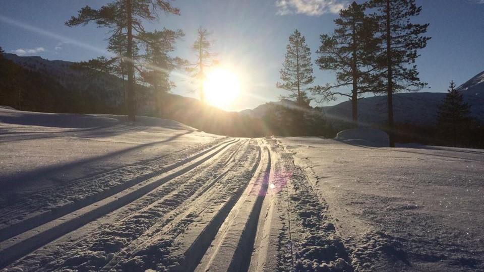 Nypreparerte skispor i Vindøldalen